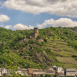 Charles Gregory's photo